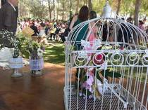 wedding planner Finca la Pinada