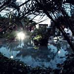 Lanza una moneda en el famoso estanque de los deseos en Finca la Pinada